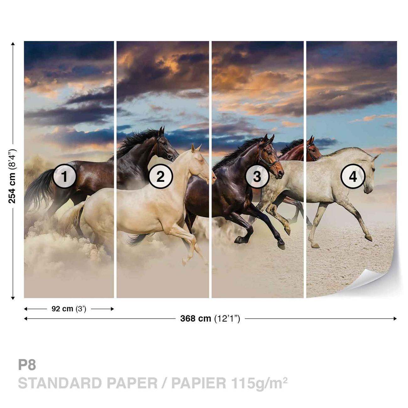 chevaux poster mural papier peint acheter le sur. Black Bedroom Furniture Sets. Home Design Ideas