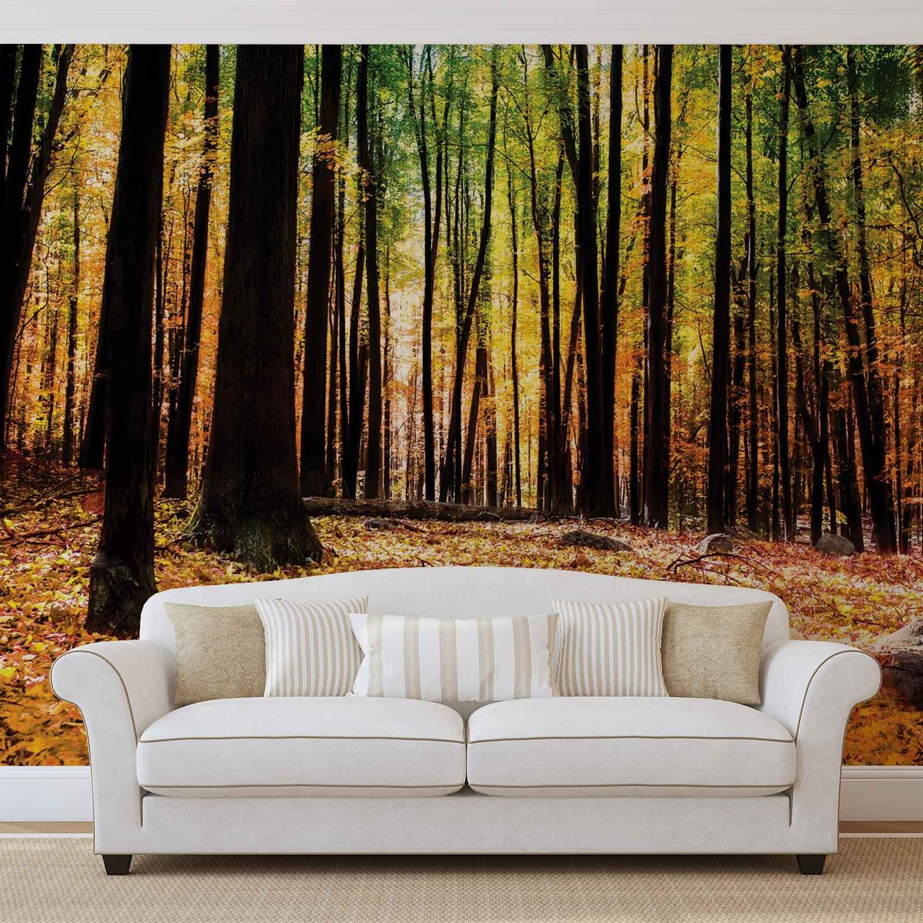Carta da parati bosco foresta for Poster murali giganti