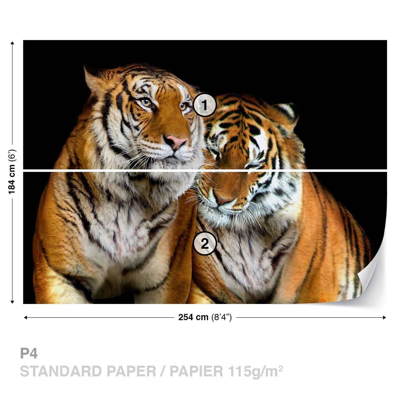 tigres poster mural papier peint acheter le sur. Black Bedroom Furniture Sets. Home Design Ideas