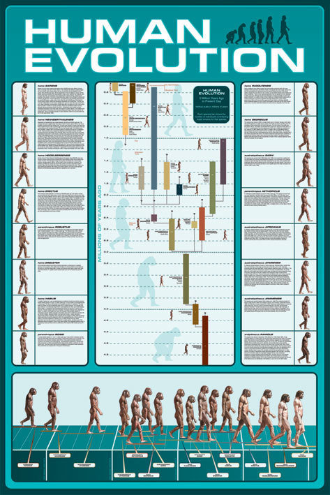 Poster quadro human evolution su for Cornice poster 61x91