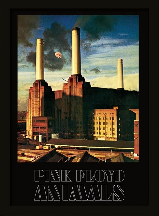 pink floyd animals gerahmte poster bilder kaufen bei europosters. Black Bedroom Furniture Sets. Home Design Ideas