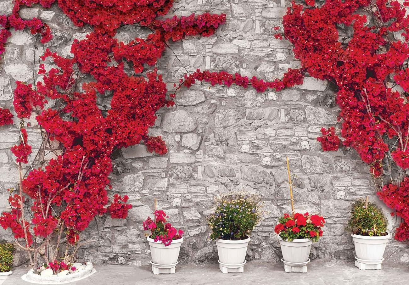 Carta da parati muro di pietra con fiori rossi for Carta da parati muro