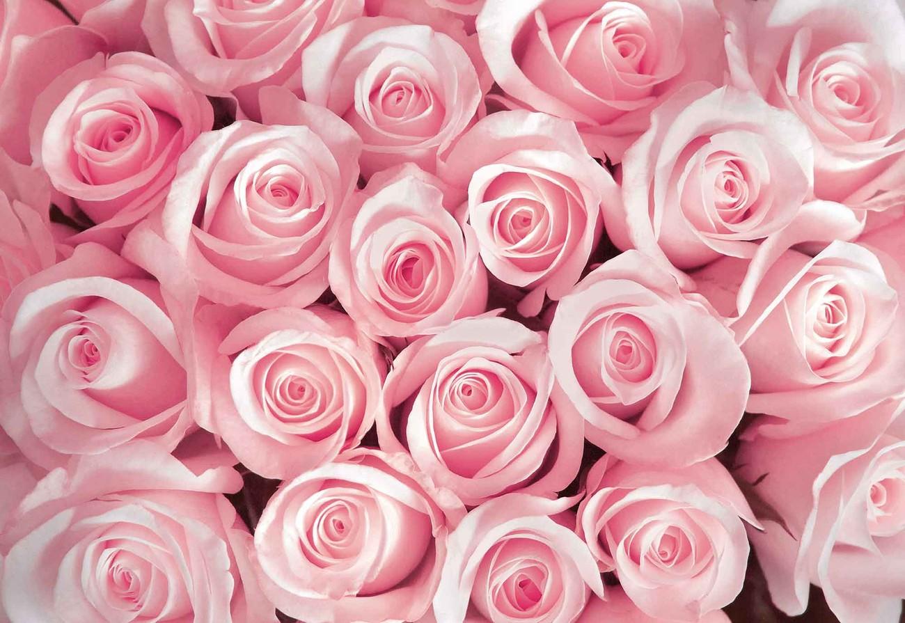 Carta da parati rose fiori for Carta parati fiori