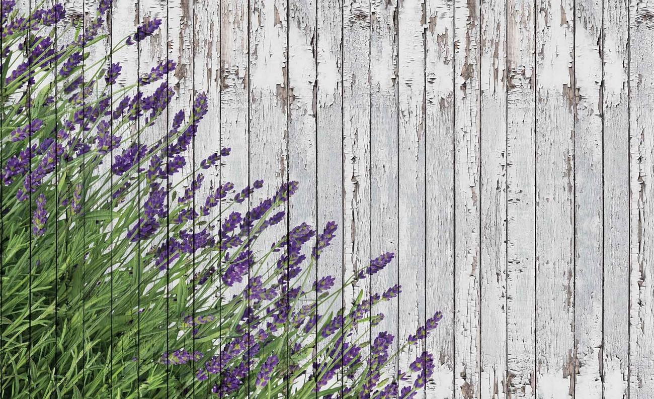 fototapete tapete lavendel blumen holz planken vintage. Black Bedroom Furniture Sets. Home Design Ideas
