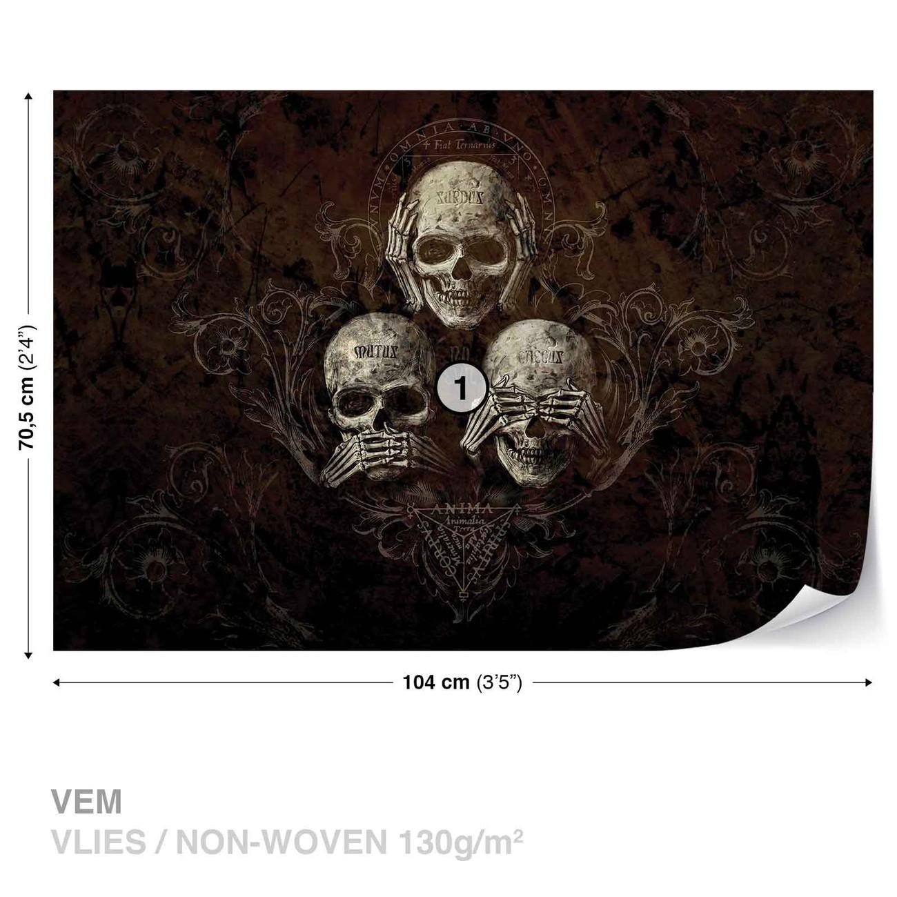 fototapete tapete nicht h ren sehen totenkopf alchemy bei europosters kostenloser versand. Black Bedroom Furniture Sets. Home Design Ideas