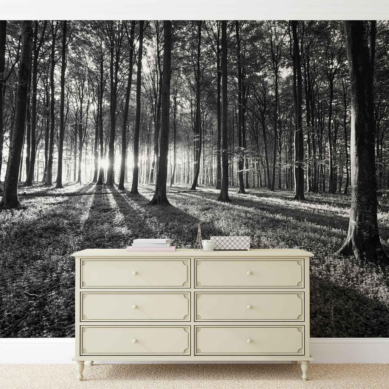 fototapete tapete wald b ume licht strahl natur bei. Black Bedroom Furniture Sets. Home Design Ideas