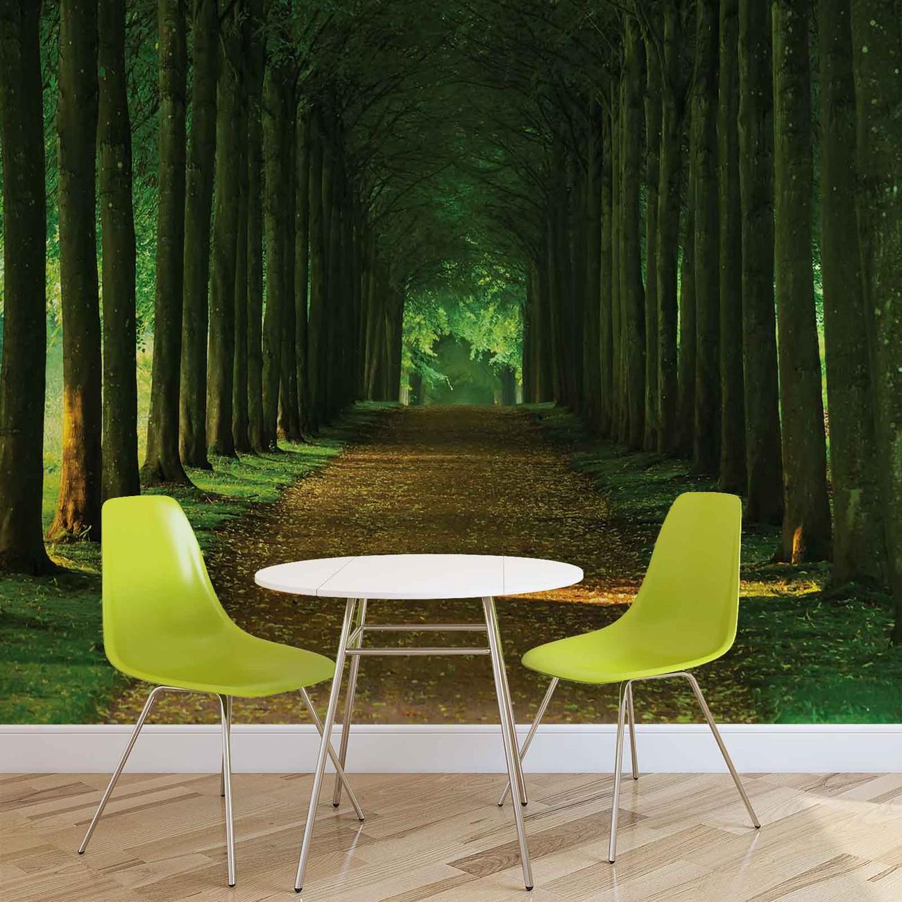 fototapete tapete weg b ume wald natur bei europosters kostenloser versand. Black Bedroom Furniture Sets. Home Design Ideas