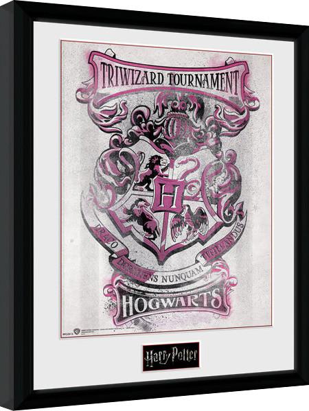 harry potter triwizard hogwarts gerahmte poster kaufen bei europosters. Black Bedroom Furniture Sets. Home Design Ideas