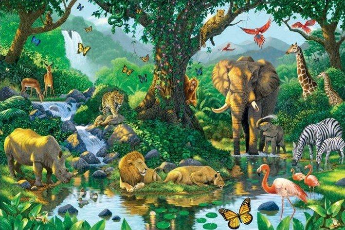 bestel de harmony jungle poster op europosters nl