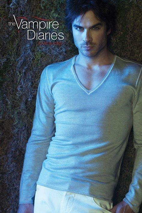 Poster quadro vampire diares damon su for Cornice poster 61x91