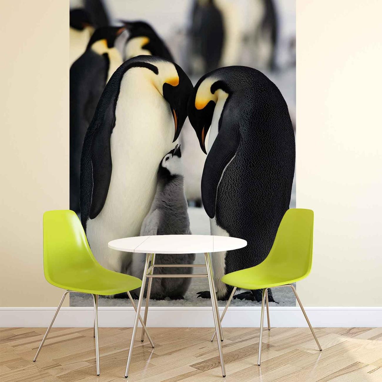 animaux pingouin poster mural papier peint acheter le sur. Black Bedroom Furniture Sets. Home Design Ideas