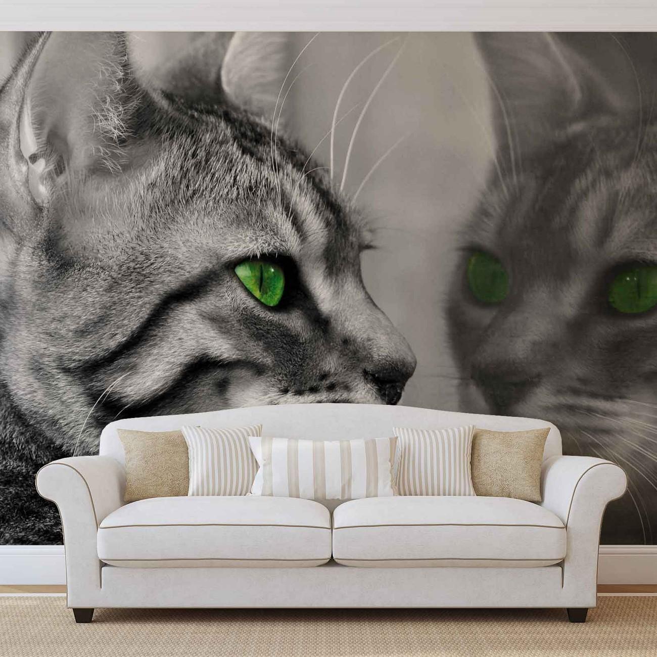 chat chatons poster mural papier peint acheter le sur. Black Bedroom Furniture Sets. Home Design Ideas