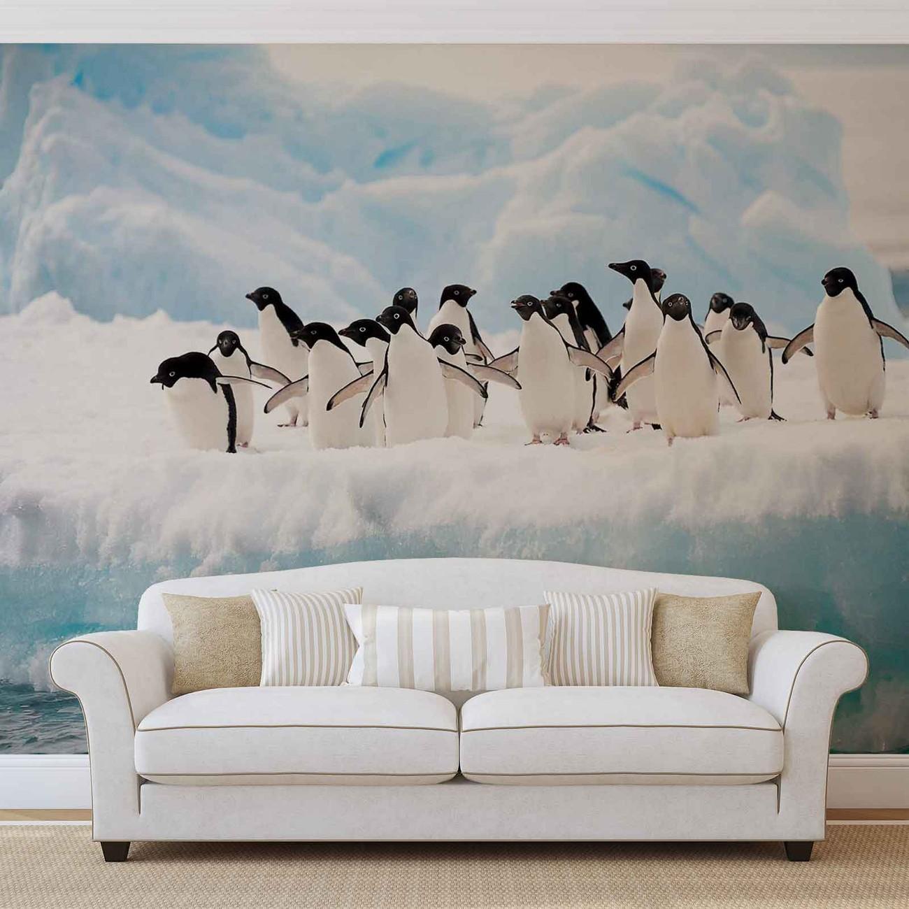 pingouins poster mural papier peint acheter le sur. Black Bedroom Furniture Sets. Home Design Ideas