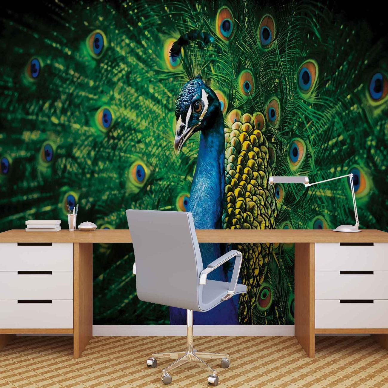 plumes de faisan oiseaux poster mural papier peint acheter le sur. Black Bedroom Furniture Sets. Home Design Ideas