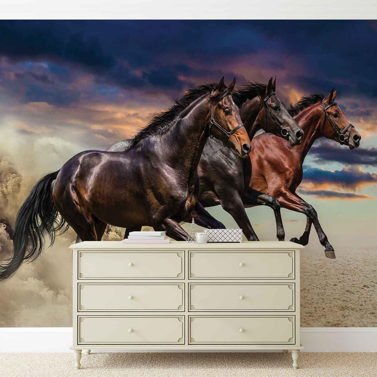 poney cheval poster mural papier peint acheter le sur. Black Bedroom Furniture Sets. Home Design Ideas