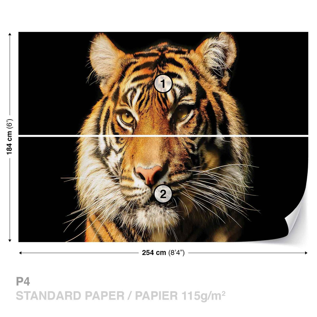 tigre poster mural papier peint acheter le sur. Black Bedroom Furniture Sets. Home Design Ideas
