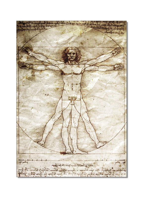 quadro leonardo da vinci vitruvian man in vendita su europosters. Black Bedroom Furniture Sets. Home Design Ideas
