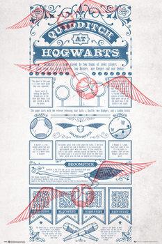 Αφίσα Harry Potter - Quidditch At Hogwarts