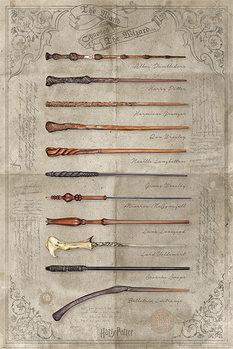Αφίσα Harry Potter - The Wand Chooses The Wizard