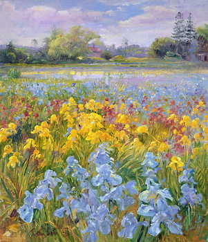 Εκτύπωση καμβά Irises, Willow and Fir Tree, 1993
