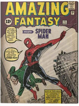 Εκτύπωση καμβά Spider-Man - Issue 1