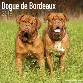 Ημερολόγιο 2022 Dogue de Bordeaux