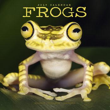 Ημερολόγιο 2022 Frogs