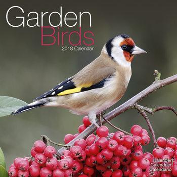 Ημερολόγιο 2022 Garden Birds