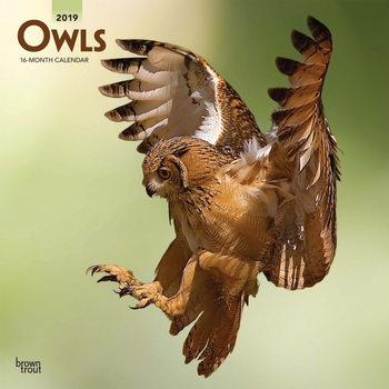 Ημερολόγιο 2022 Owls