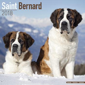 Ημερολόγιο 2022 Saint Bernard