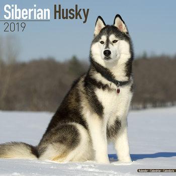 Ημερολόγιο 2022 Siberian Husky