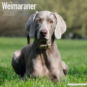 Ημερολόγιο 2022 Weimaraner