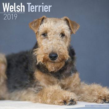 Ημερολόγιο 2022 Welsh Terrier