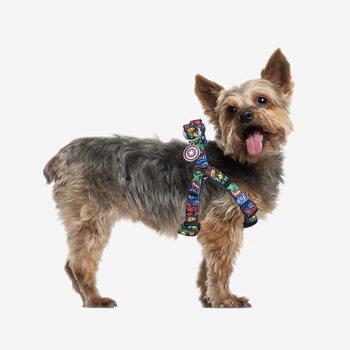 Σαμαράκι σκύλων Marvel