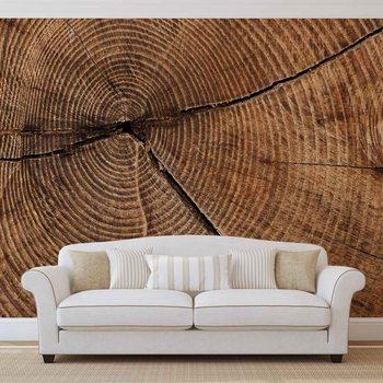 Ταπετσαρία τοιχογραφία Baum Stumpf Ringe