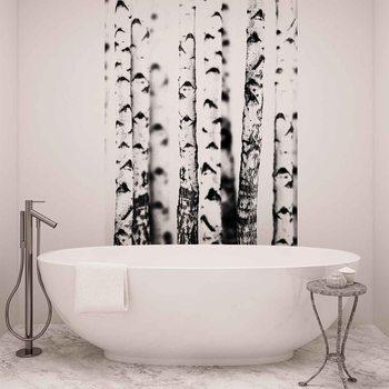 Ταπετσαρία τοιχογραφία Birch Trees