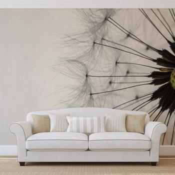 Ταπετσαρία τοιχογραφία Dandelion