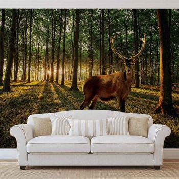 Ταπετσαρία τοιχογραφία Deer Forest Trees Nature