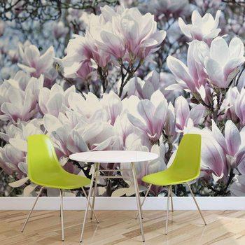 Ταπετσαρία τοιχογραφία Flowers Magnolia
