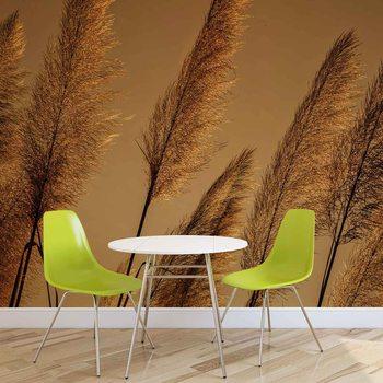 Ταπετσαρία τοιχογραφία Grasses Blowing In The Wind