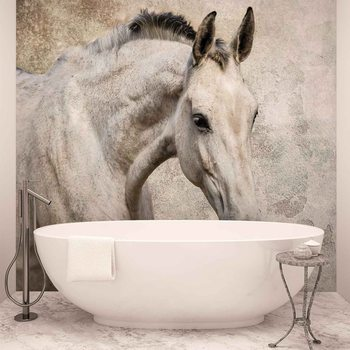 Ταπετσαρία τοιχογραφία Horse Pony