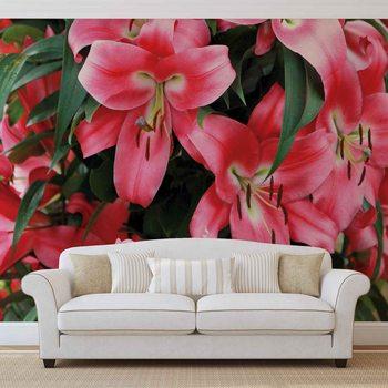 Ταπετσαρία τοιχογραφία Lilys