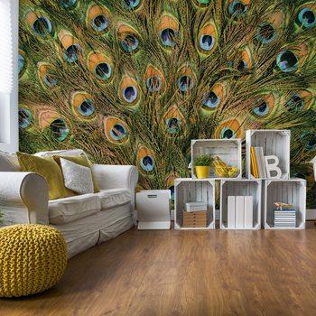 Ταπετσαρία τοιχογραφία Peacock Feathers