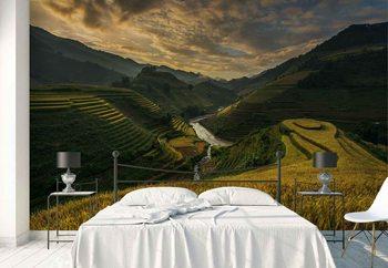 Ταπετσαρία τοιχογραφία Rice Terrace In Vietnam
