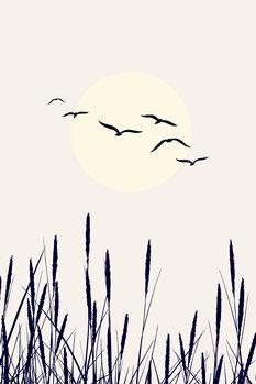Ταπετσαρία τοιχογραφία Shadows Of The Sun