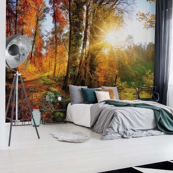 Ταπετσαρία τοιχογραφία Sunrise In Autumn Forest