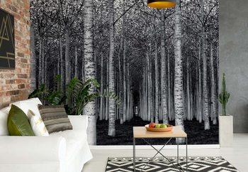 Ταπετσαρία τοιχογραφία The Forest For The Trees