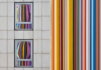 Ταπετσαρία τοιχογραφία  The Gray And The Colors