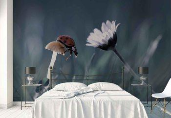 Ταπετσαρία τοιχογραφία The Story Of The Lady Bug