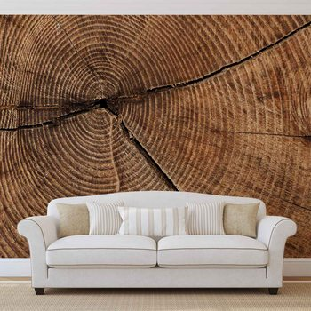 Ταπετσαρία τοιχογραφία Tree Stump Rings